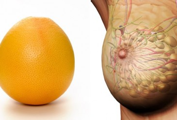 grapefruit-breasts-healing