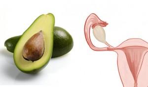 avocados-uterus-healing